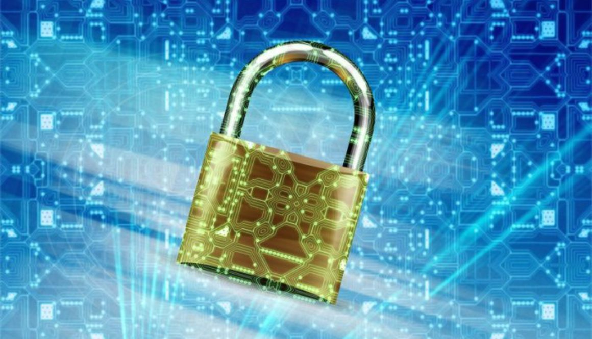 internet_security_privacy 100715273 large
